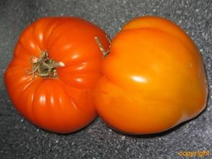 Tomate - German Orange Strawberry